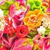 Familias de aromas: florales